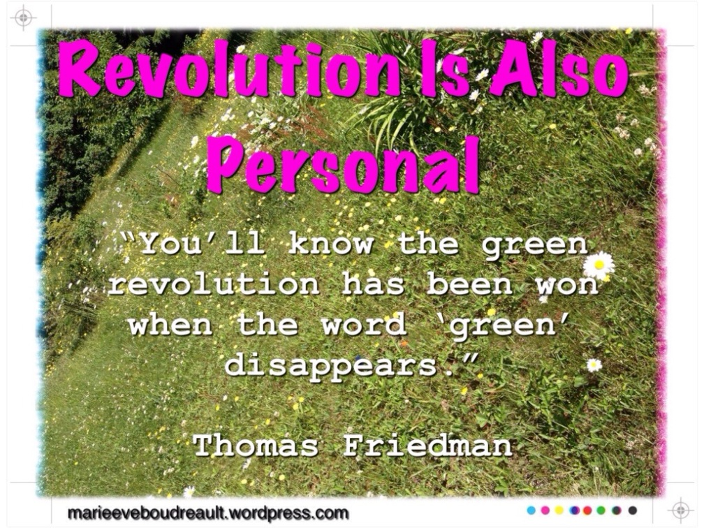 revolution is also personal peace integrity society warrior green zen life alternative living blog rewild nature marie-Eve Boudreault author