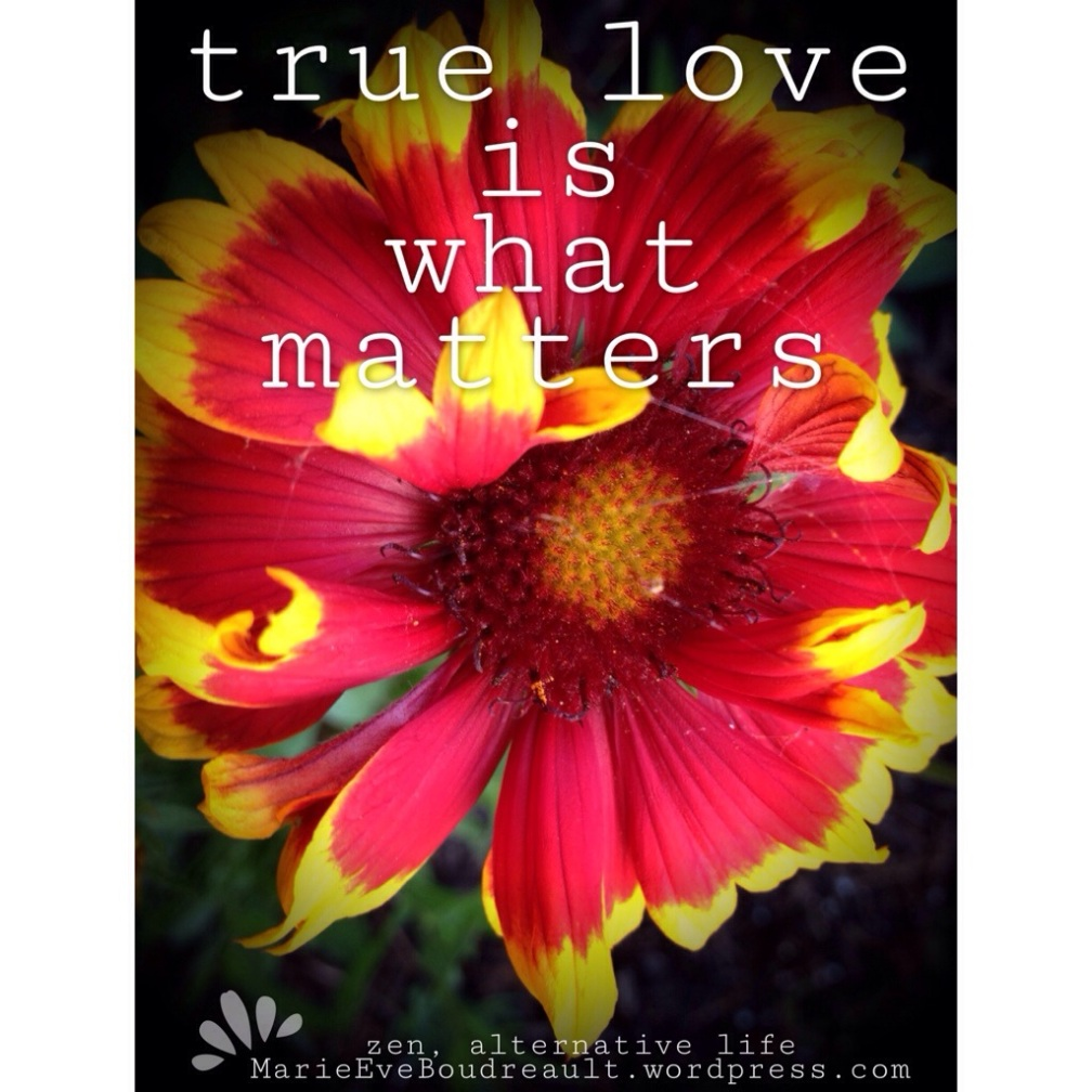 what is true love how can you know for sure happiness book marie Eve Boudreault blog alternative zen life