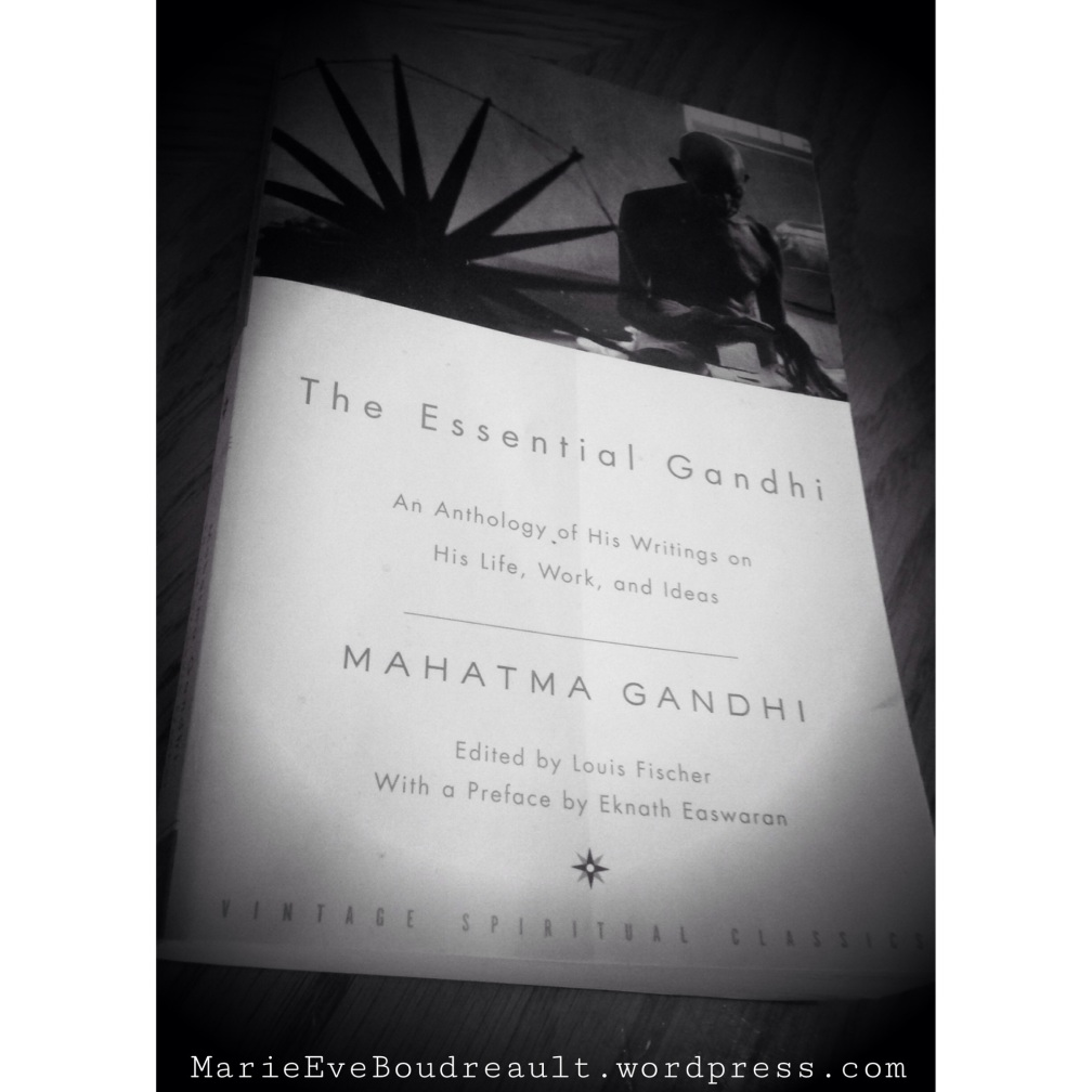 The essential Gandhi top books 2014